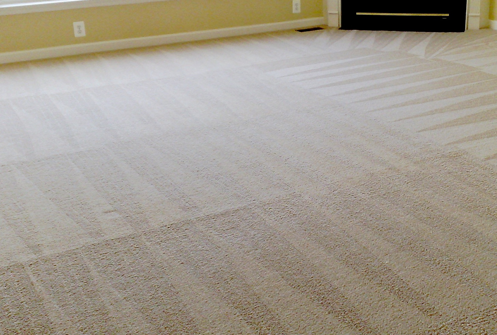 best way to clean carpet diy carpet cleaning and the best time of the year to clean 30875